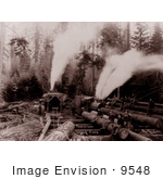 #9548 Picture of Thomas Lake Logging Camp by JVPD