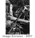 #9557 Picture Of A Saw Mill