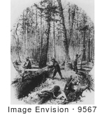 #9567 Picture Of Lumberjacks At Work