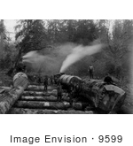 #9599 Picture Of Steam Logging