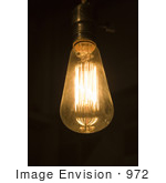 #972 Stock Photo of an Old Fashioned Light Bulb by Jamie Voetsch