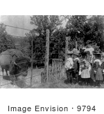 #9794 Picture Of Children Looking At A Caged Bison