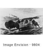 #9804 Picture Of Hunters Shooting Buffalo From A Train