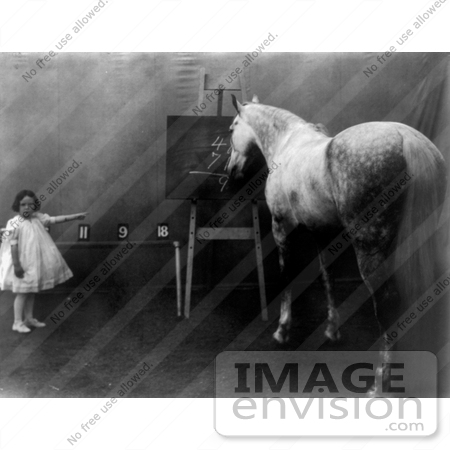 #11282 Picture of a Girl With a Smart Horse by JVPD