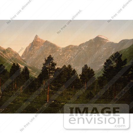 #11484 Picture of Mountains and Forest, Norway by JVPD