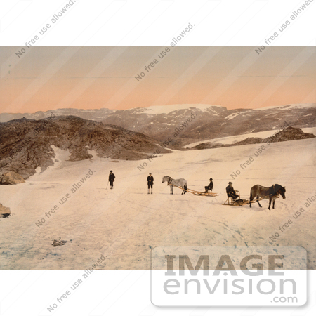 #11487 Picture of People and Horses on Folgefond Glacier by JVPD