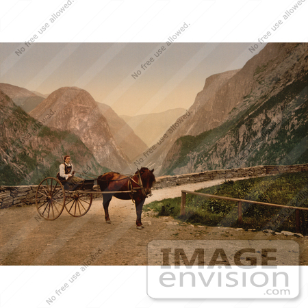 #11526 Picture of a Norwegian Woman in a Carriage, Hardanger Fjord by JVPD