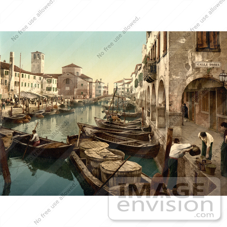 #11660 Picture of Chioggia, Fish Market, Venice, Italy by JVPD