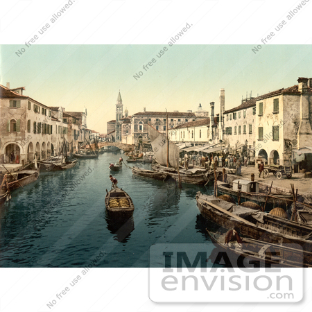 #11670 Picture of Chioggia, fish market, Venice, Italy by JVPD