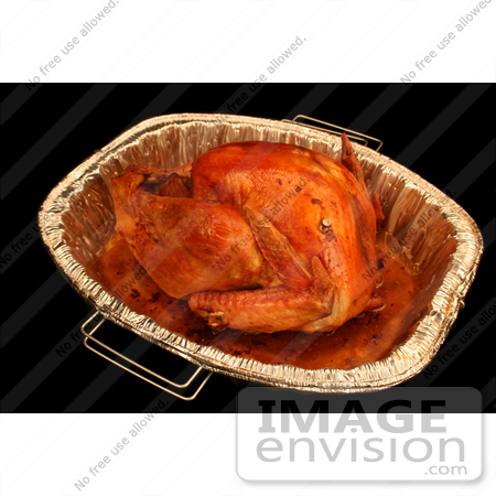 #1206 Thanksgiving Photography of a Cooked Turkey in a Pan by Kenny Adams