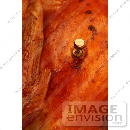 #1213 Photography of a Meat Thermometer in a Turkey by Kenny Adams