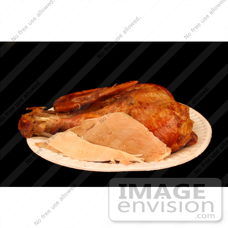 #1216 Picture of Thanksgiving Turkey Leftovers on a Paper Plate by Kenny Adams