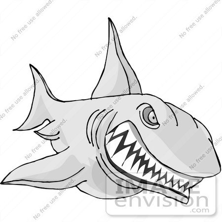 Angry shark clipart - photo#25