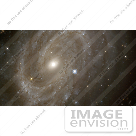 #1368 Stock Photo of Variable Stars in a Distant Spiral Galaxy by JVPD