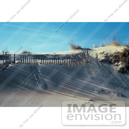 #15631 Picture of Shadows Cast on Sand Dunes From a Fence on a Beach by JVPD