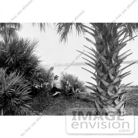 #16225 Picture of Women Under a Palm Tree on a Beach in Miami by JVPD