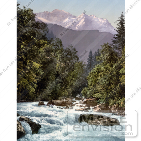 #18041 Picture of Lutschine River Running Through an Evergreen Forest, Jungfrau Mountain, Switzerland by JVPD