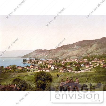 #18167 Photo of Vineyards and Village of Vevey on Geneva Lake, Switzerland by JVPD