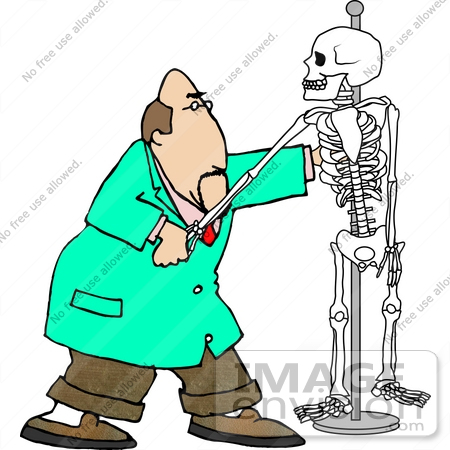#18841 Male Chiropractor Doctor Man With a Human Skeleton Model Clipart by DJArt