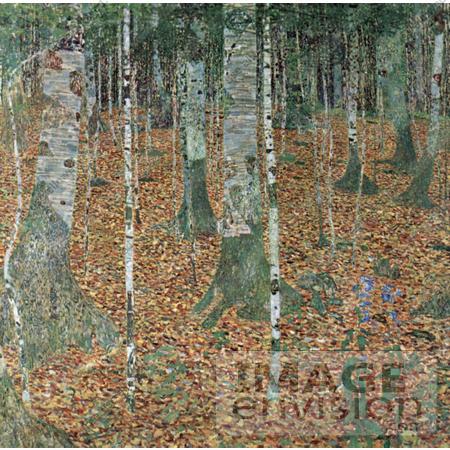 #19061 Photo of a Forest of Birch Trees by Gustav Klimt by JVPD