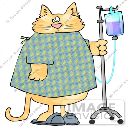 #19439 Chubby Orange Tabby Cat in a Hospital Gown and Slippers, Walking With IV Fluids Clipart by DJArt