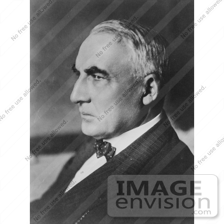 #20362 History Stock Photo of Warren G Harding in Profile by JVPD