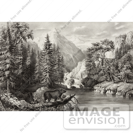 #20715 Stock Photography of a Bear on a Fallen Tree Log by a River, Mountains and Waterfalls by JVPD
