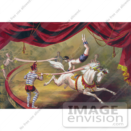 #20728 Stock Photography of a Circus Acrobat Doing a Hand Stand on a Horse by JVPD