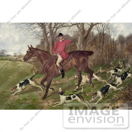Stock photo of a man on a horse surrounded by dogs while fox hunting