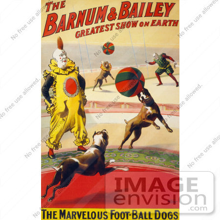#21097 Stock Photography of The Marvelous Foot-Ball Dogs and a Clown Performing in the Barnum and Bailey Circus by JVPD