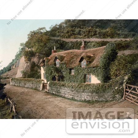 #21945 Stock Photography of a Cute Ivy Covered Swiss Cottage in Lee, Devon, England by JVPD