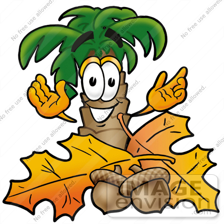 #25029 Clip Art Graphic of a Tropical Palm Tree Cartoon Character With Autumn Leaves and Acorns in the Fall by toons4biz