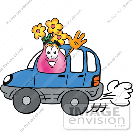 #25685 Clip Art Graphic of a Pink Vase And Yellow Flowers Cartoon Character Driving a Blue Car and Waving by toons4biz