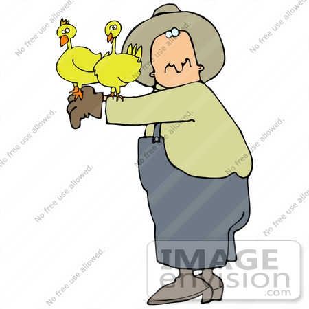 ... Two Chickens Perched On A Male Farmer's Arm Clipart Picture by DJArt