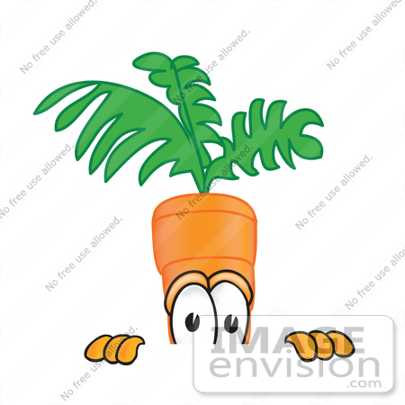 #27585 Clip Art Graphic of an Organic Veggie Carrot Mascot Character Peeking Over a Surface by toons4biz