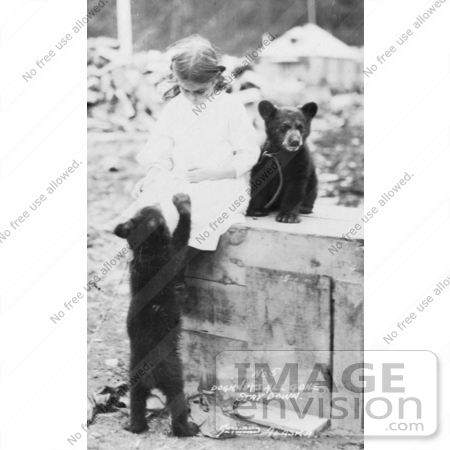 #27889 Historical Stock Photo of a Chained Bear Cub Sitting On Top Of A Wooden Crate By A Little Girl While Another Cub Stands On Its Hind Legs To Beg For Food by JVPD