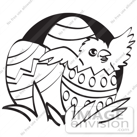 #29211 Royalty-free Cartoon Clip Art of a Baby Chicken Hatching Out Of A Decorated Easter Egg, Black and White by Andy Nortnik