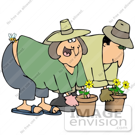 #30799 Clip Art Graphic of a White Couple, a Man and Woman, Gardening and Potting Flowers, a Bee Stinging the Woman's Butt by DJArt