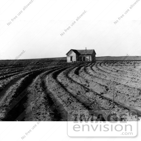 #3107 Tilled Rows by JVPD