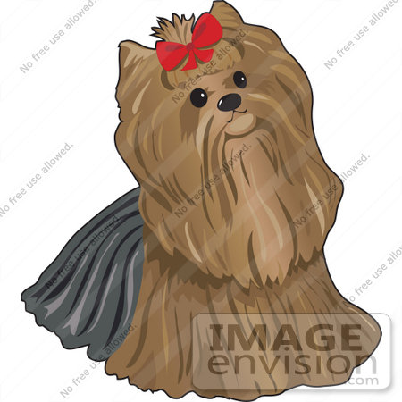 #34135 Clip Art Graphic of a Pampered Pooch, A Yorkie Terrier Dog, Wearing A Red Bow by Maria Bell