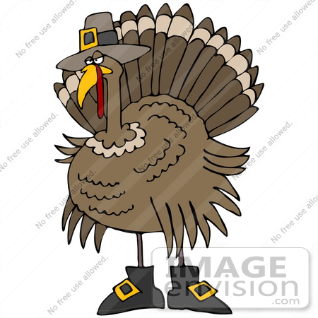 #35702 Clip Art Graphic of a Thanksgiving Turkey Bird Disguised As A Pilgrim, Wearing A Hat And Boots by DJArt