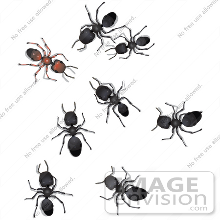 Royalty-Free Cartoons & Stock Clipart of Worker Ants | Page 1