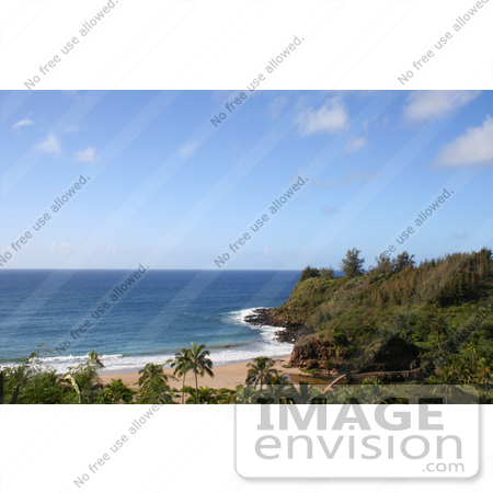 #36541 Stock Photo of a View Of The Bridge In Allerton Garden Along The Coast Of Lawai Bay, South Kauai, Hawaii by Jamie Voetsch