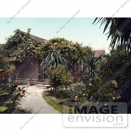 #40778 Stock Photo of a Small Cottage Surrounded By Beautiful Rose Gardens In Pasadena, California by JVPD