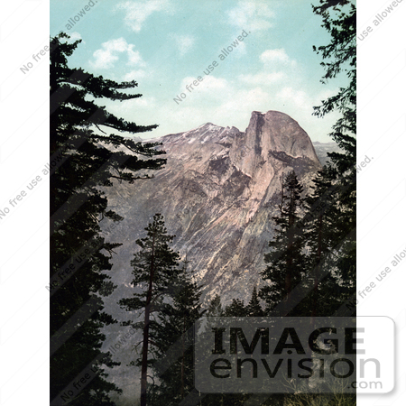 #40800 Stock Photo of Tall Green Trees Framing A View Of Half Dome, Yosemite National Park, California by JVPD