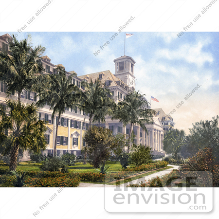 #41065 Stock Photo Of Palm Trees In Front Of The Royal Poinciana Hotel In Palm Beach, Florida by JVPD