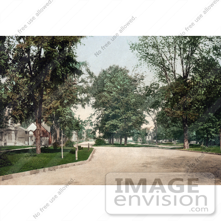 #41066 Stock Photo Of The Residential Street, Western Boulevard In Detroit, Michigan by JVPD