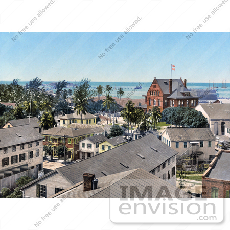 #41119 Stock Photo Of Scatterd Palm Trees Near The Custom House And Harbor In Key West, Florida by JVPD