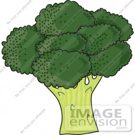 #42317 Clip Art Graphic of a Head Of Fresh Green Broccoli by Maria Bell