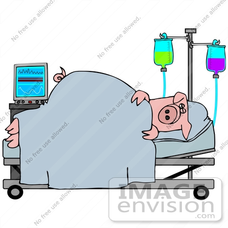 #42367 Clip Art Graphic of an Ill Pig Recovering In A Hospital by DJArt